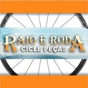 Raio e Roda Cicle Peças
